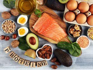 role des proteines dans lorganisme